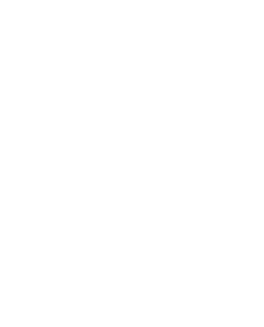 Logo for Matt Ordeshook Website Horse in white -a chess piece - vector art